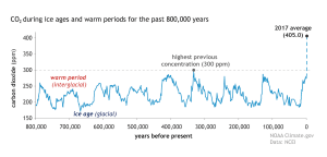 Carbon Concerns